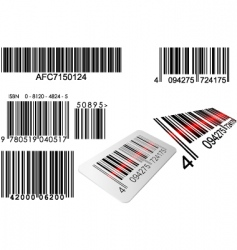 barcode vector image vector image