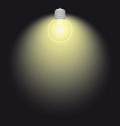 lighting bulb lamp vector image