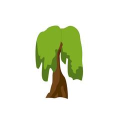 stylized green tree cartoon vector image vector image
