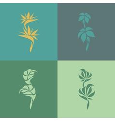 Tropical plants Set of design elements vector image vector image