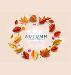 autumn background with gold leaves circle vector image