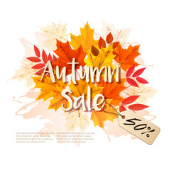autumn sale card with colorful leaves vector image