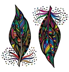 Decorative feathers Hand drawn vector image