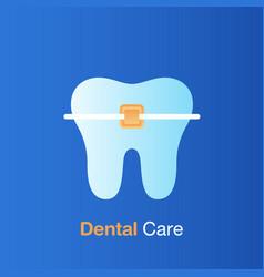 dental care concept braces care good hygiene vector image