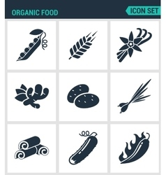 Set of modern icons Organic food asparagus vector image