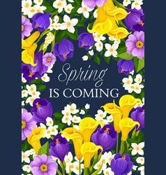 Spring season holiday flowers greeting card vector