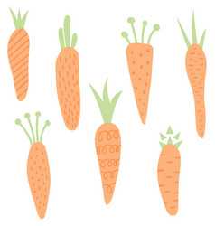 carrots set vector image vector image