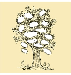 Family tree design with empty frames for text vector image vector image
