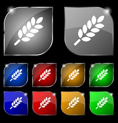 Wheat Ears Icon sign Set of ten colorful buttons vector image