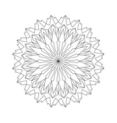 black and white round acute mandala vector image