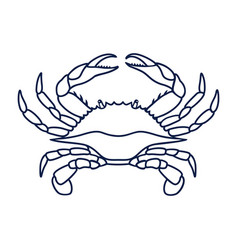 Blue crab on white background vector