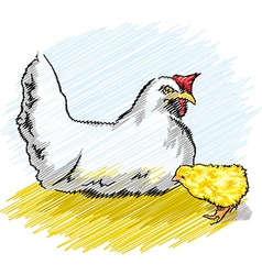 Chicken and chick vector image