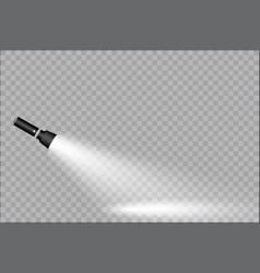 flashlight on a transparent background vector image