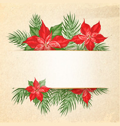 floral garland or red poinsettia and empty space vector image