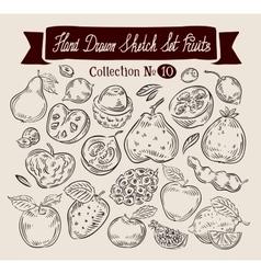 Fruit Hand drawn sketch set food vector image