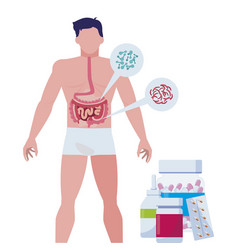 Man anatomy with digestive system and medical vector