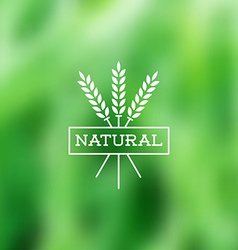 Natural vintage label on blurry background vector image