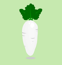 pattern seamless with cute white radish vegetables vector image