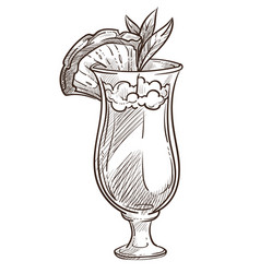 pina colada cocktail isolated sketch summer vector image