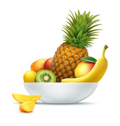 plate full of tropical fruits vector image