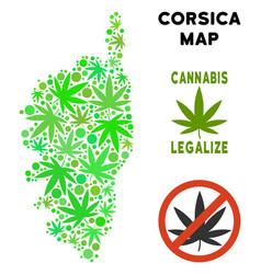 Royalty free marijuana leaves composition corsica vector