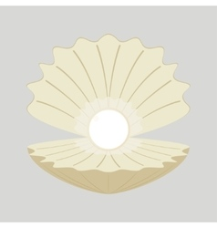 Beautiful natural open pearl vector image