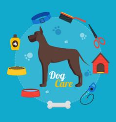 cartoon dog care concept vector image vector image