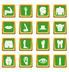 body parts icons set green vector image vector image