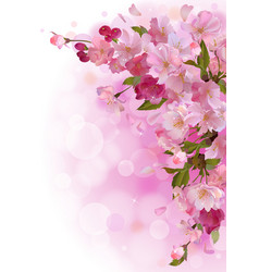 Vertical card with gentle pink sakura flowers vector image vector image