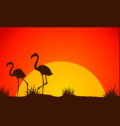 Beauty landscape flamingo at sunset silhouette vector