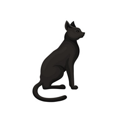 detailed flat icon of graceful black cat vector image