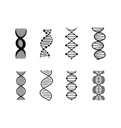 dna icons set silhouette vector image