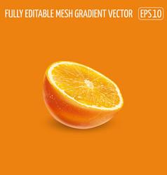 Half an orange on an orange background vector