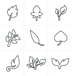 Line Icons Style leaf icon vector