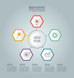 timeline infographic concept with 5 options vector image vector image