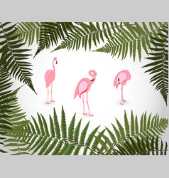 frame from palm leaf with white background vector image vector image