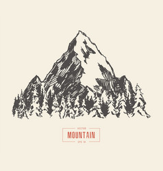 mountain peak pine forest hand drawn sketch vector image