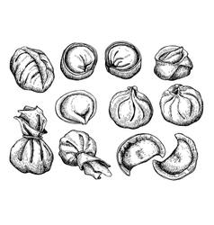set of dumplings Vintage sketch vector image vector image