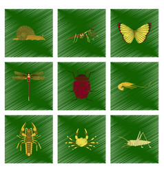 assembly flat shading style bug snail vector image