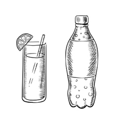 Bottle of soda with cocktail vector