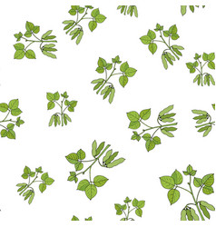 Seamless pattern with soybean vector