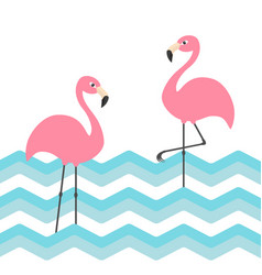 two pink flamingo set blue sea ocean water zigzag vector image