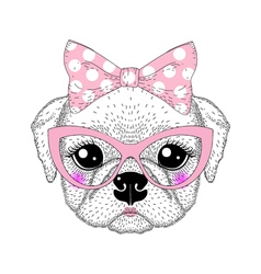 Cute pug portrait with pin up bow tie on head kat vector image vector image