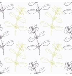 Hand drawn marjoram branch stylized black and vector image vector image