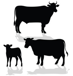 Cow Family Silhouette with Shadow vector image vector image