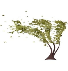 Grunge tree in the wind vector image vector image