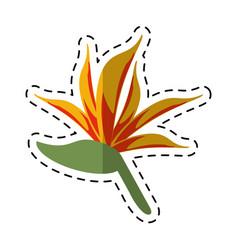 cartoon bird of paradise flower vector image