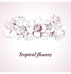 Tropical flower sketch vector image vector image