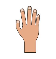 Color image cartoon realistic hand human palm vector