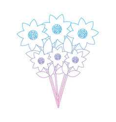 flower bouquet icon image vector image